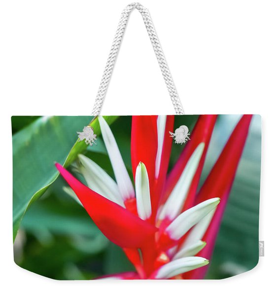 Red And White Birds Of Paradise Weekender Tote Bag