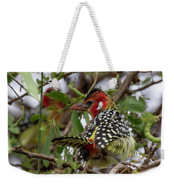Red-and-yellow Barbet Weekender Tote Bag
