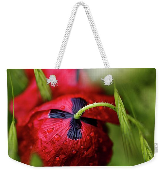 Red Corn Poppy Flowers With Dew Drops Weekender Tote Bag