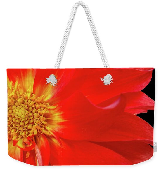 Red Dahlia On Black Background Weekender Tote Bag