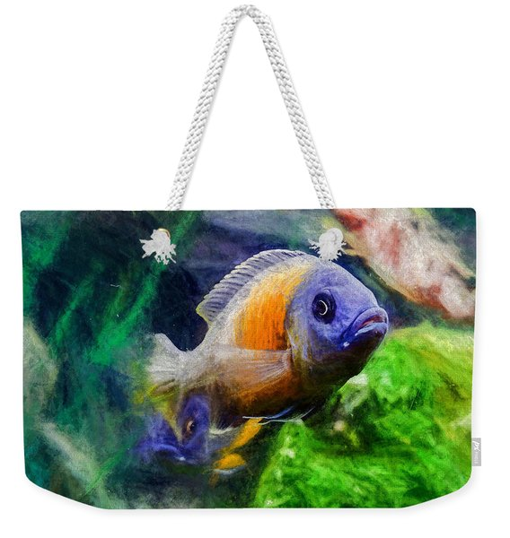 Weekender Tote Bag featuring the digital art Red Fin Borleyi Cichlid by Don Northup