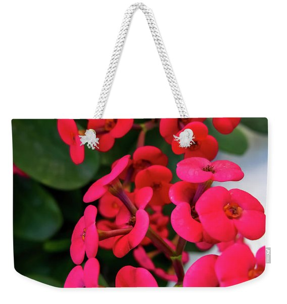 Red Flowers In Bloom Weekender Tote Bag
