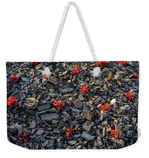 Red Flowers Over Stones Weekender Tote Bag