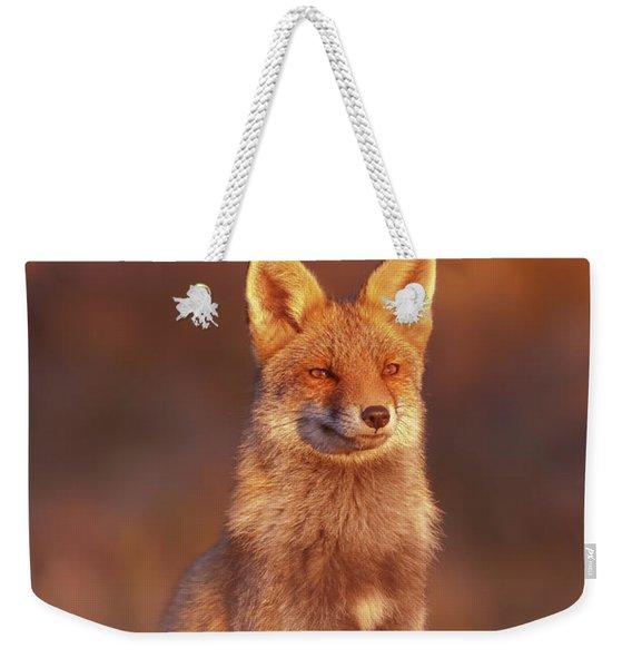 Red Fox At Sunset Series - The Lightness Of Being Weekender Tote Bag