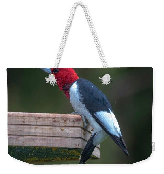 Red-headed Woodpecker Perched Weekender Tote Bag