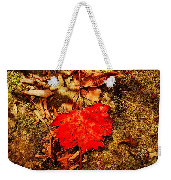 Red Leaf On Mossy Rock Weekender Tote Bag