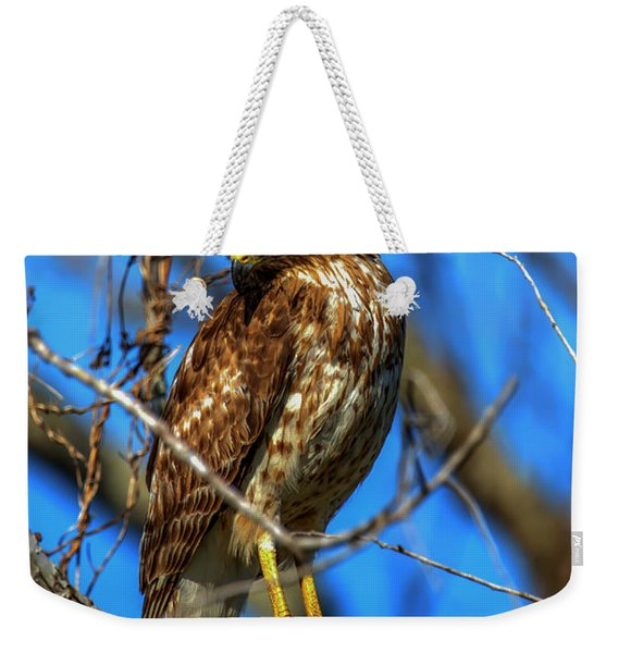 Red Shouldered Hawk Weekender Tote Bag