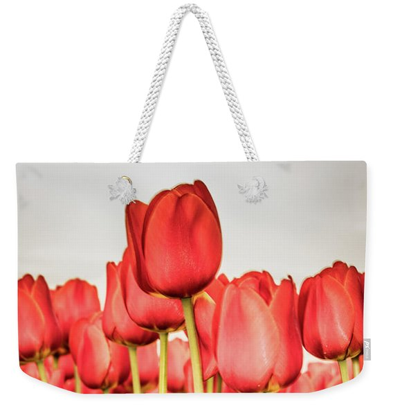 Weekender Tote Bag featuring the photograph Red Tulip Field In Portrait Format. by Anjo Ten Kate