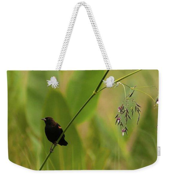 Red-winged Blackbird On Alligator Flag Weekender Tote Bag