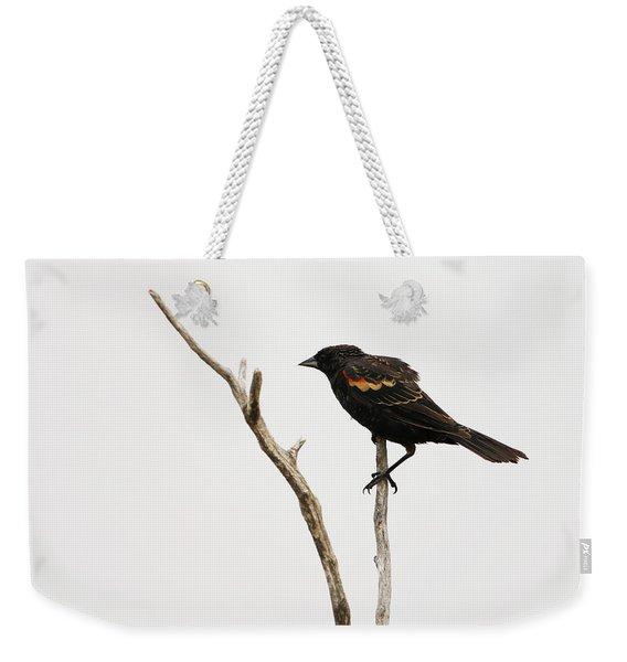 Red Winged Blackbird Weekender Tote Bag