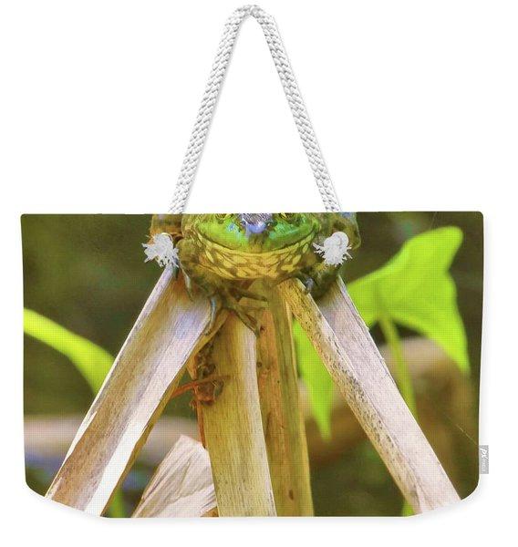 Reeds Bully Weekender Tote Bag