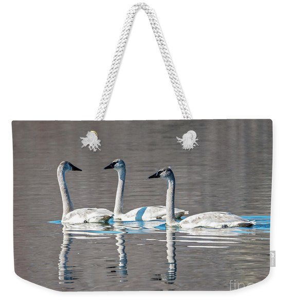 Reflections Of Three Weekender Tote Bag