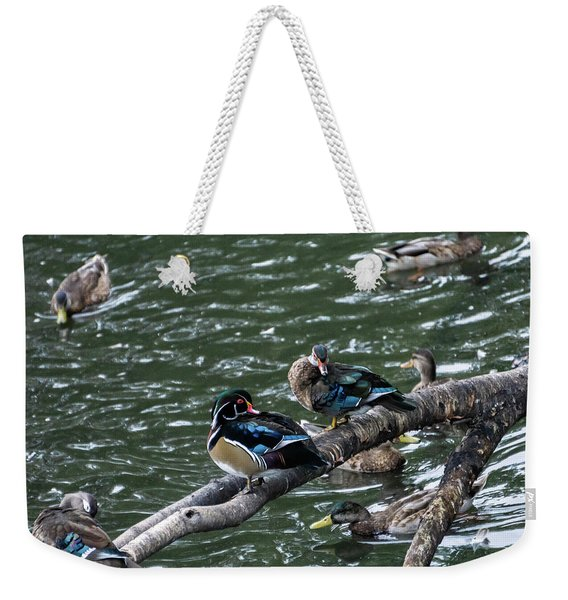 Resting Ducks Weekender Tote Bag