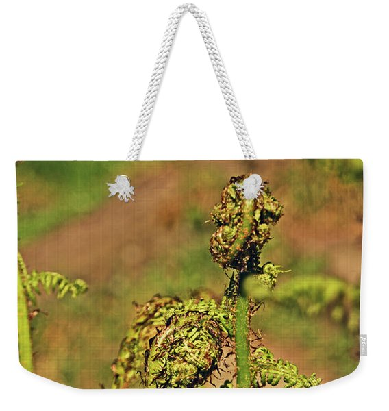 Rivington Terraced Gardens. Fern Frond. Weekender Tote Bag