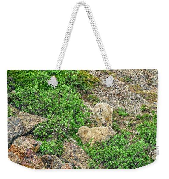 Roaming Mountain Goats In Colorado's Hinterland Weekender Tote Bag