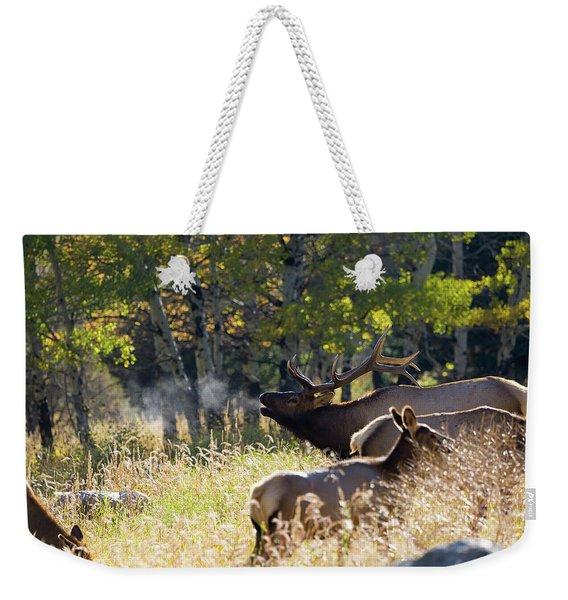 Rocky Mountain Bull Elk Bugeling Weekender Tote Bag