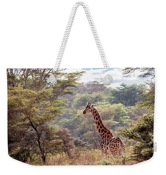 Rothschild Giraffe In Lake Nakuru Kenya Weekender Tote Bag