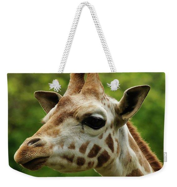 Rothschild's Giraffe 1 Weekender Tote Bag