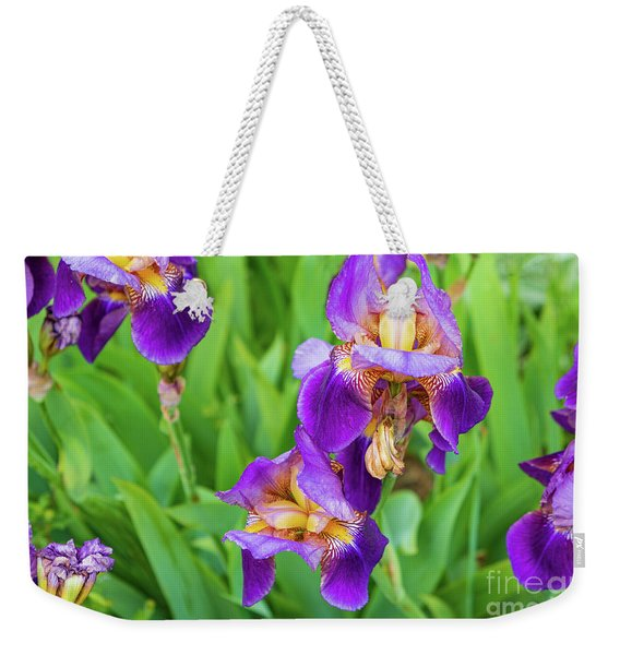 Royal Purple Irise Weekender Tote Bag
