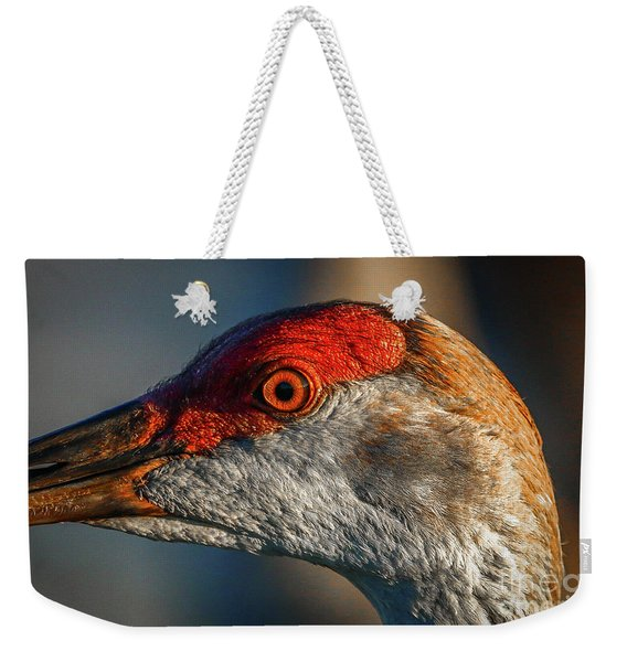 Weekender Tote Bag featuring the photograph Sandhill Close Up Portrait by Tom Claud