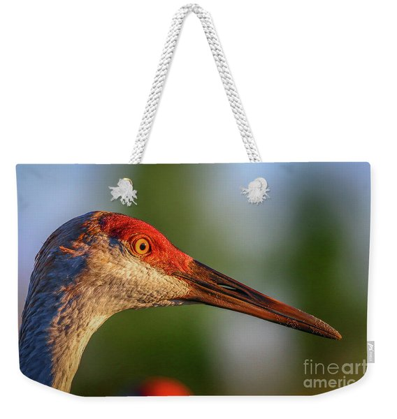 Weekender Tote Bag featuring the photograph Sandhill Sunlight Portrait by Tom Claud