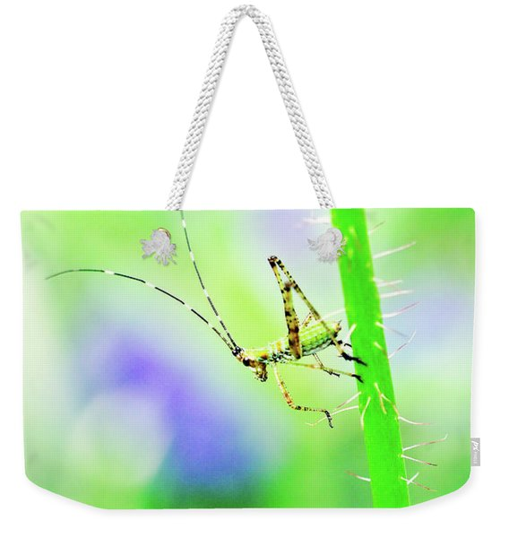 Weekender Tote Bag featuring the photograph Say Hello To My Little Green Insect Friend by Don Northup