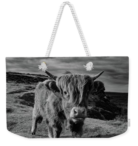 Weekender Tote Bag featuring the photograph Saying Hello To A Highland Cow At Baslow Edge Black And White by Scott Lyons