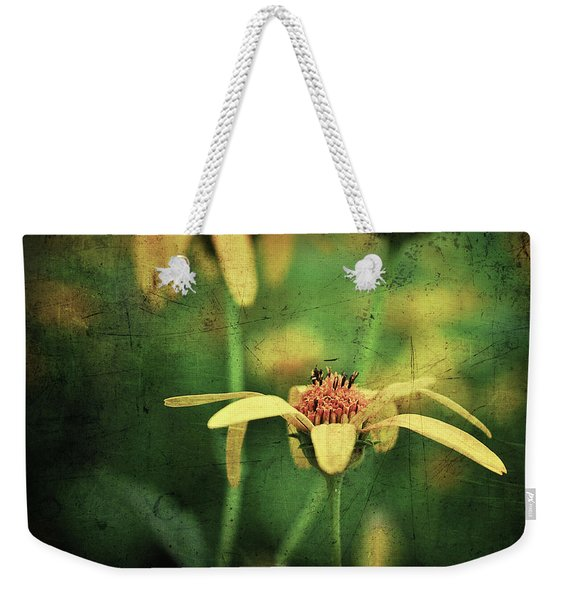 Weekender Tote Bag featuring the photograph Scratched by Michelle Wermuth
