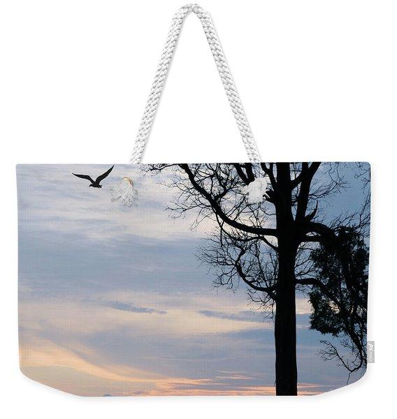 Seagull Sunset At Catawba Weekender Tote Bag