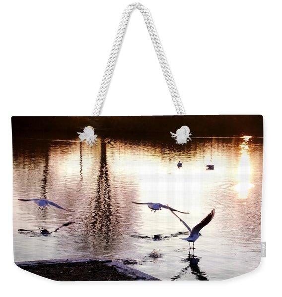 Seagulls In The Morning Weekender Tote Bag
