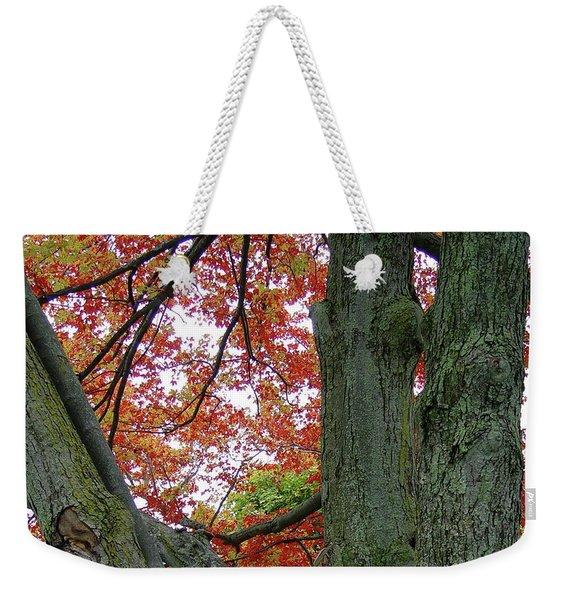 Seeing Autumn Weekender Tote Bag