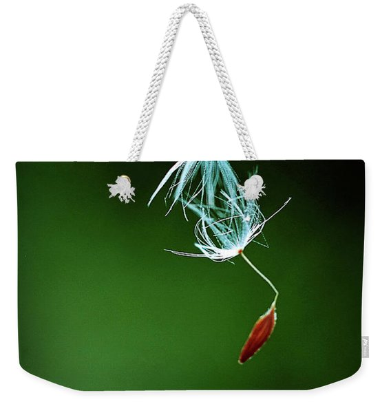 Weekender Tote Bag featuring the photograph Seeking by Michelle Wermuth