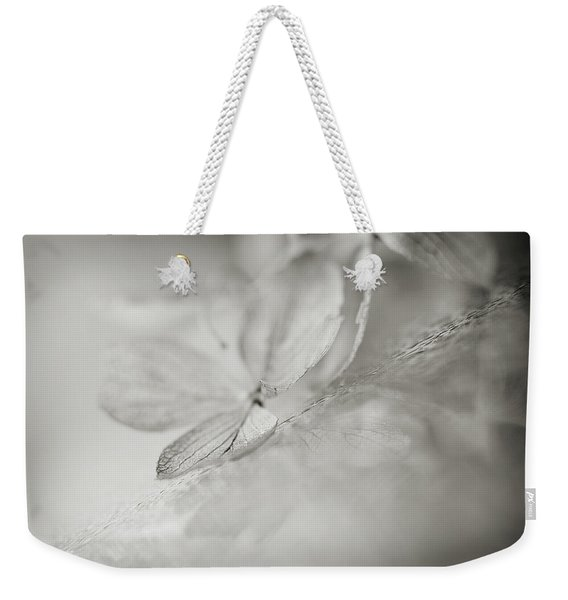 Weekender Tote Bag featuring the photograph Selection by Michelle Wermuth