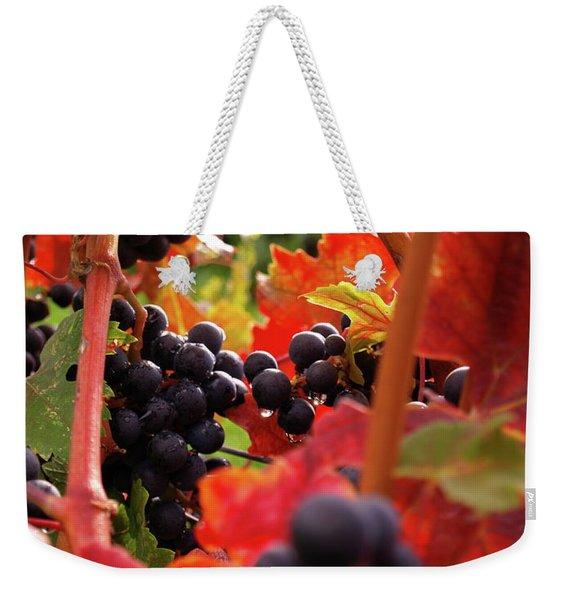 Shalestone - 2 Weekender Tote Bag
