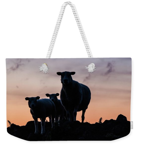 Weekender Tote Bag featuring the photograph Sheep Family by Anjo Ten Kate