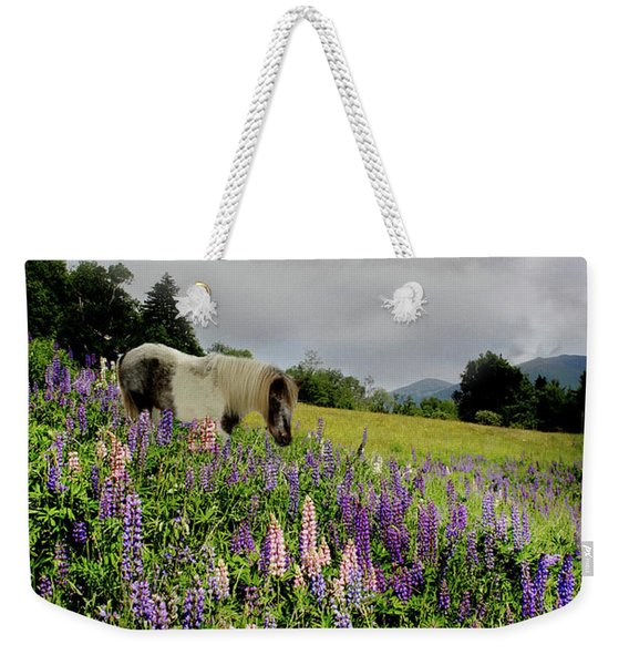 Weekender Tote Bag featuring the photograph Shetland In A Lupine Field by Wayne King
