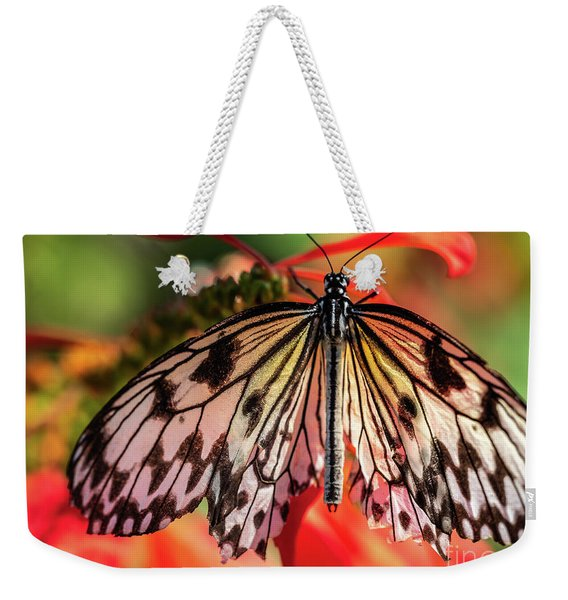 Weekender Tote Bag featuring the photograph Shimmering In The Light by Robin Zygelman
