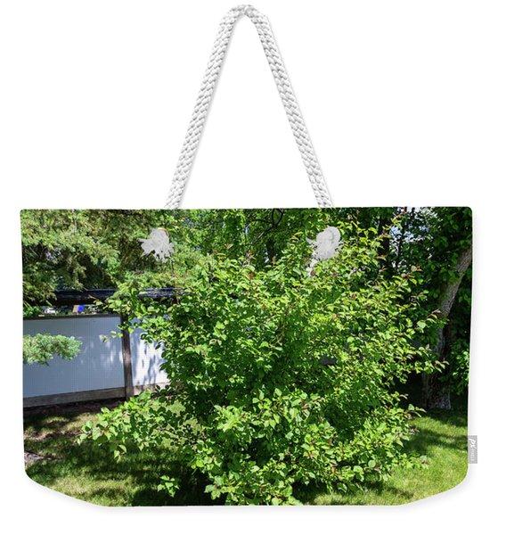 Shrub In The Garden Weekender Tote Bag