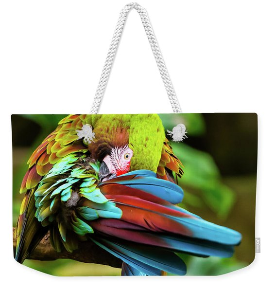 Weekender Tote Bag featuring the photograph Shy Parrot by Dheeraj Mutha