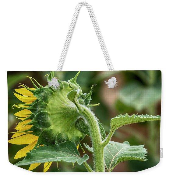 Shy Sunflower  Weekender Tote Bag