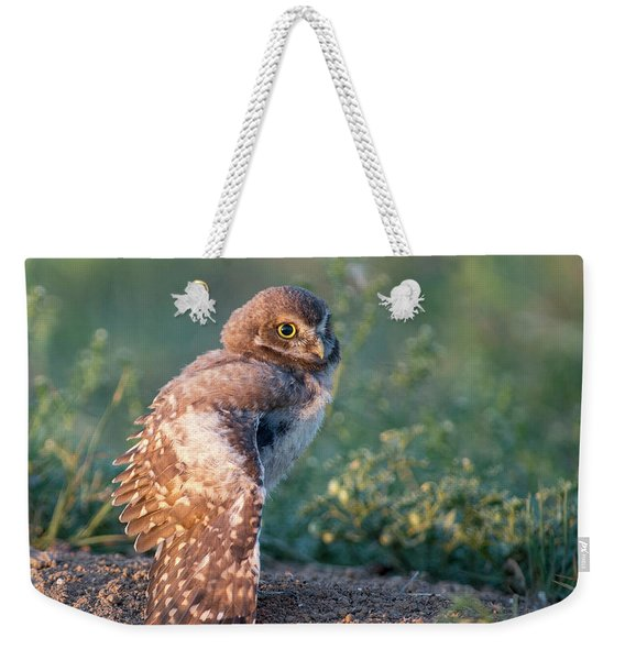 Shy Young Burrowing Owl Weekender Tote Bag