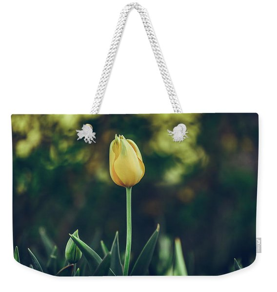 Weekender Tote Bag featuring the photograph Silence Is Golden by Dheeraj Mutha