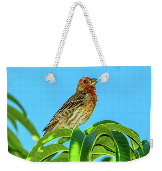 Singing House Finch Weekender Tote Bag