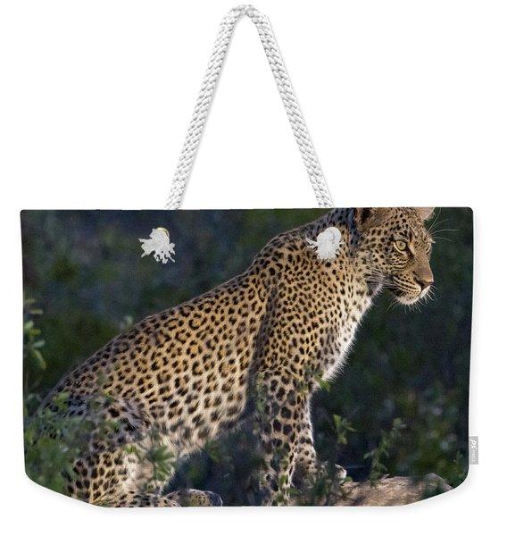 Sitting Leopard Weekender Tote Bag