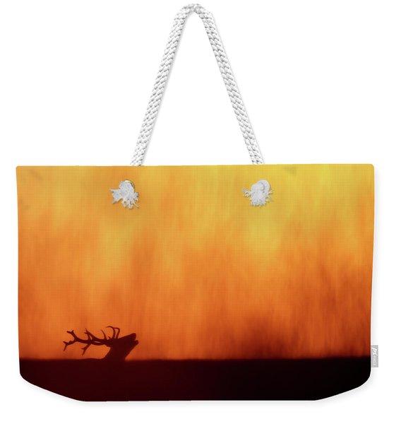 Sky On  Fire - Bellowing Red Deer At Sunset Weekender Tote Bag