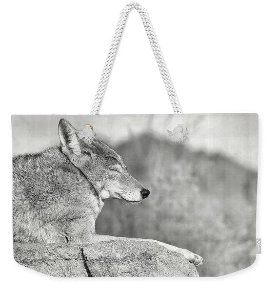 Sleepy Coyote Weekender Tote Bag