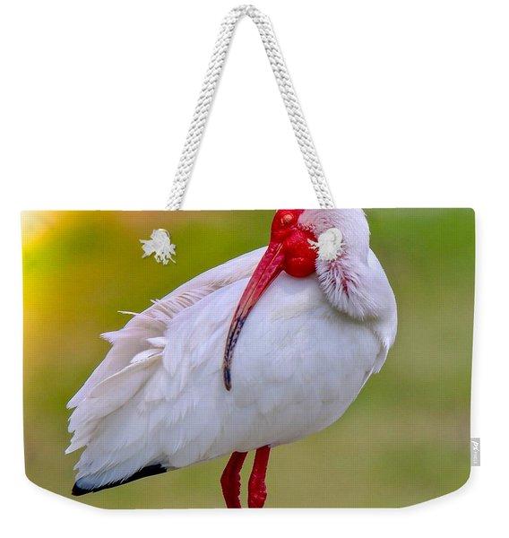 Sleepy Ibis Weekender Tote Bag