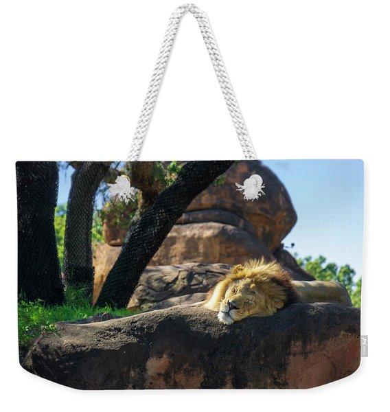 Sleepy Lion Weekender Tote Bag