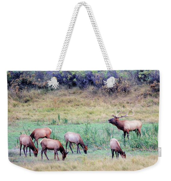 Slippery Ann Elk Weekender Tote Bag