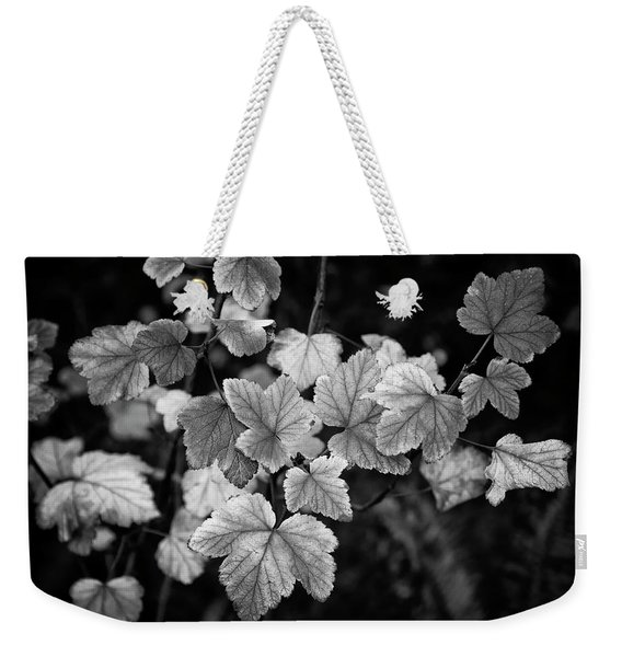 Slipping Into Fall Weekender Tote Bag